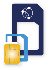 Globalgig 3-in-1 SIM - International Mobile Data